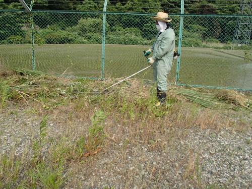 門司区にて草刈の続きです