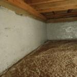 北九州市門司区にて白蟻消毒と基礎補修