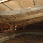 白蟻の被害で床が落ちることがあります。