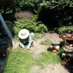 草むしりと蜂駆除を北九州市小倉南区にて、夕方よりスズメバチ駆除を小倉北区にて