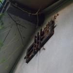 天井換気口より出入りするスズメバチ駆除を北九州市若松区にて、でもその後は?!