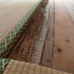 イエシロアリ調査を北九州市若松区にて、ハチ駆除を八幡西区にて