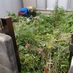 男の草むしりを北九州市八幡東区にて