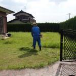 草むしりを北九州市小倉南区にて