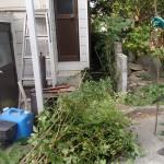 枝切りと廃材処理を北九州市八幡西区にて、シロアリ調査を遠賀郡にて