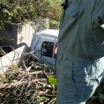 庭木剪定と草むしりを北九州市小倉南区にて