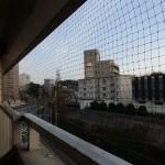 山口県下関市の防鳥(ハト)ネット取り付け完了