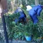 樹木剪定と伐採を北九州市小倉北区にて