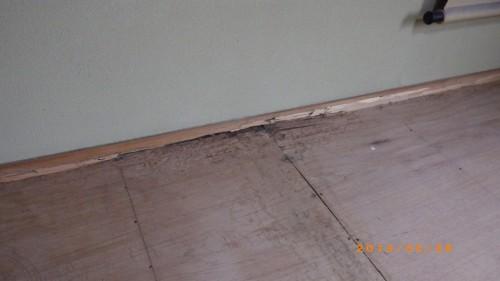 鉄筋ビルの白蟻調査を北九州市若松区にて