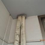 天井裏物音の犯人、ネズミ駆除の作業を北九州市小倉北区にて