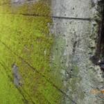 擁壁の補修を北九州市小倉北区にて