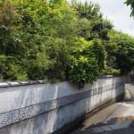 樹木剪定と草刈を北九州市小倉南区で