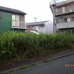 田川市で草刈二日目