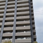 鳩の糞対策を佐賀市のマンションで