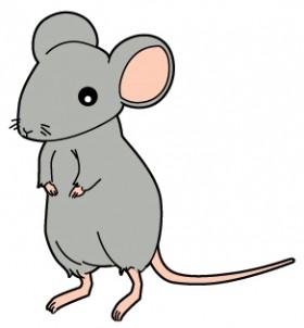 ネズミ駆除に効果的なアイテムは?バルサン・超音波・粘着シート