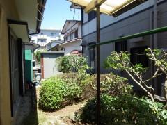 北九州 市 小倉南区 で 庭木 の 剪定 と 白あり駆除