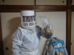スズメバチの駆除完了