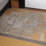 2階の畳が白ありの被害を受けました