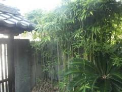 北九州市小倉北区で庭木の剪定