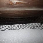 イタチの侵入口封鎖と同時に断熱材を交換