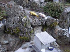 梅の花が咲き始めました、2月朔日詣り