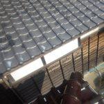 イタチは屋根から屋根へ飛び移ります