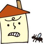 【シロアリに似た虫】茶色いハネアリ達の会話!?福岡編