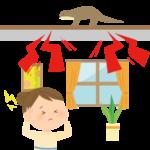 寒くなってくると天井裏に動物が侵入します。物音の相談が増えます