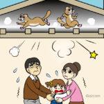【屋根裏】天井裏からドタドタ、ガタゴト、その動物の正体は?