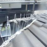 <b>福津市で太陽光パネルに鳩の巣で糞や小枝被害の駆除と予防依頼事例の紹介</b>