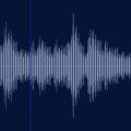 超音波発生器のムカデに対する効果について|駆除業者との違いは?